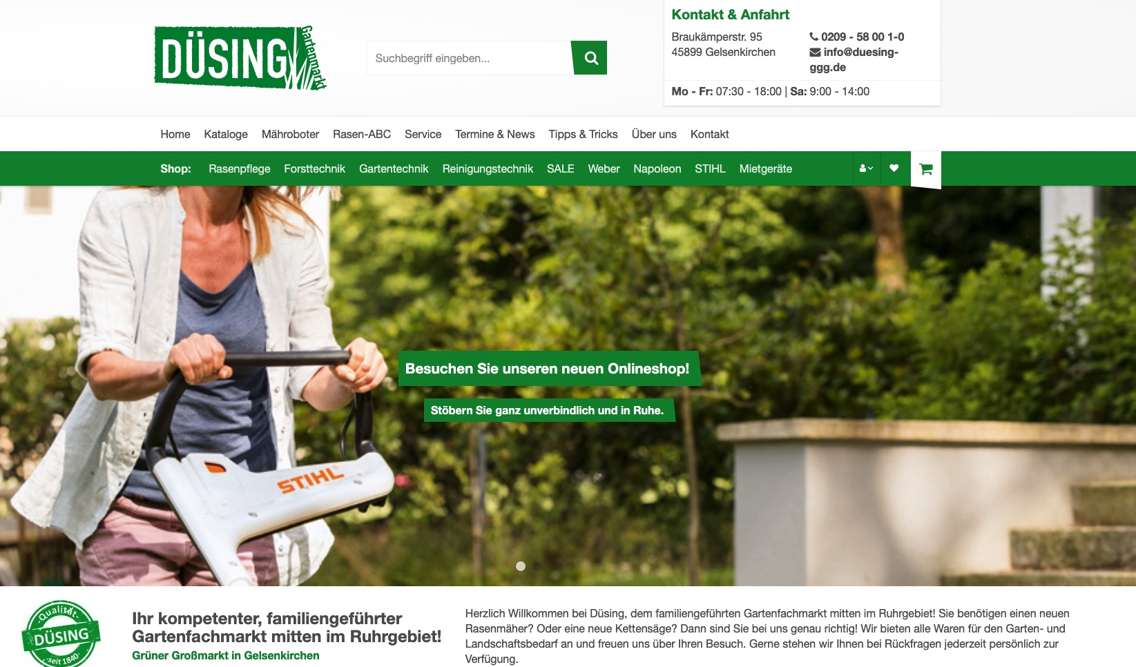 duesing-ggg.de Homepage